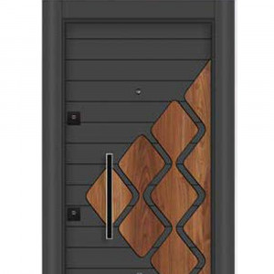 Steel Door MT 22